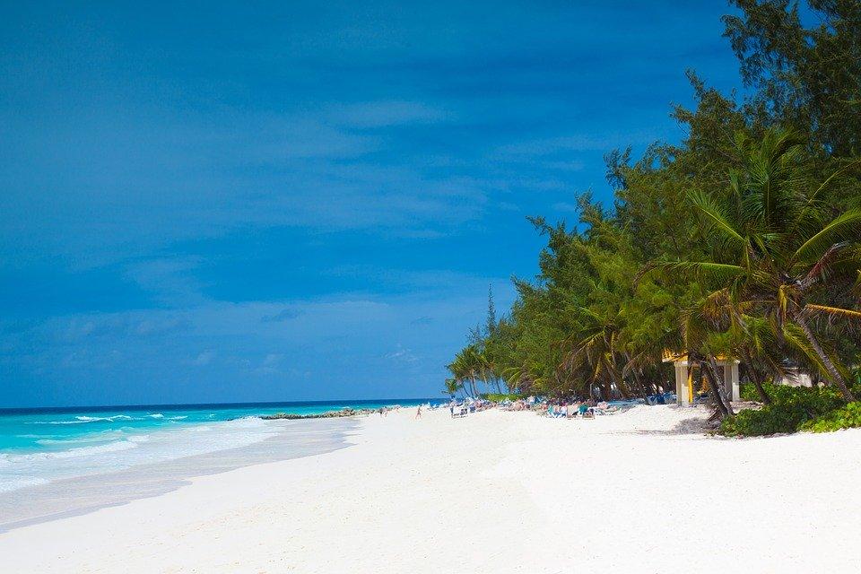 Rejser til Barbados