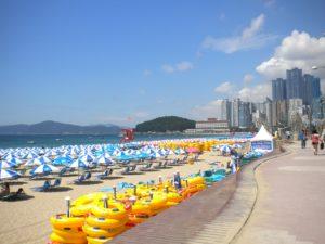 Rejser til Busan (Pusan)