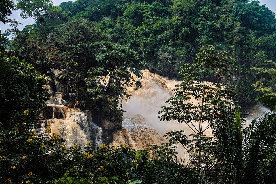 Rejser til Demokratiske Republik Congo