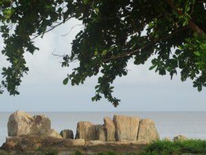 Rejser til Fransk Guyana