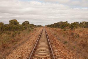 Rejser til Hwange National Park