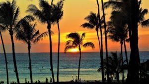 Rejser til Maui