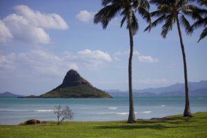 Rejser til Oahu