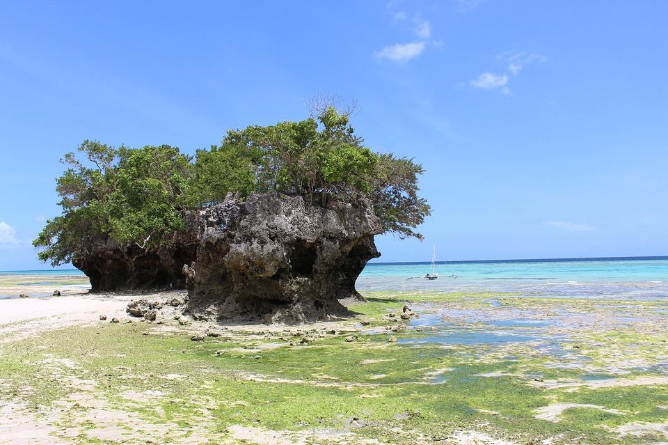 Rejser til Pemba Island