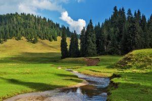 Rejser til Rumænien