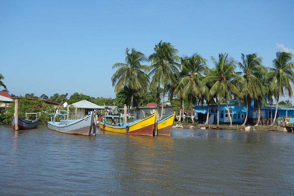 Rejser til Surinam