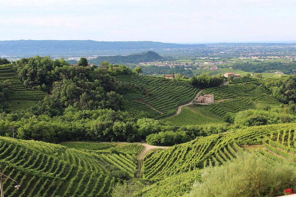 Rejser til Treviso